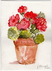 Hand Painted Card - Geraniums - Free Postage Australia wide only