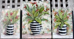 Trio - Tropical delights - sold