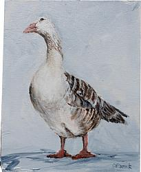 Original Painting on Canvas - The French Goose - 20 x 25cm series