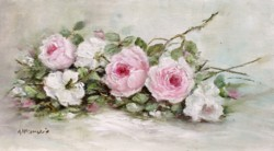 Original Painting on Ply Panel - Laying Roses Study - Postage is included Australia wide