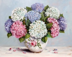 Late December Hydrangeas - Postage is included Australia Wide