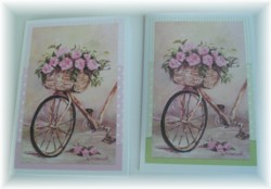 Gift Cards - set of 2 - Vintage Bicycle