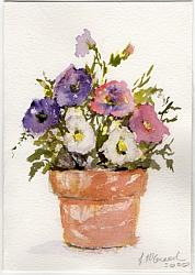 Hand Painted Card - Petunias - Free Postage Australia wide only