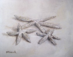 Ready to Frame Print  -  Star Fish -  Postage is included Worldwide