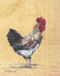 Rooster on French Postcard - Postage is included Australia Wide