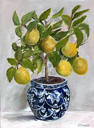 Ready to hang Print - Topiary Lemons in Blue & W (29 x 39cm)  FREE POSTAGE Australia wide